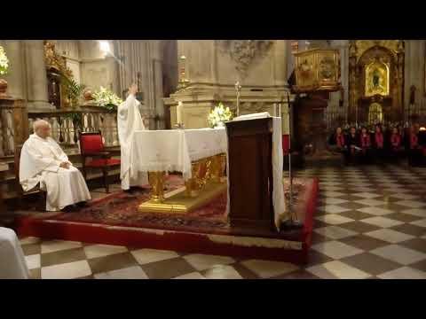 Homilía Vicario General Archidiócesis De Granada Francisco Javier Espigares 25 Aniversario Ronda 110