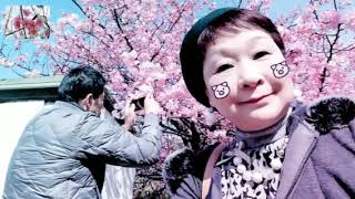 『大角海浜公園』🐳《河津桜見頃》🌸2019/02/18 thumbnail