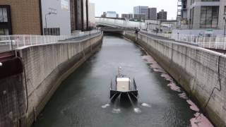 石神井川水質改善業務 thumbnail