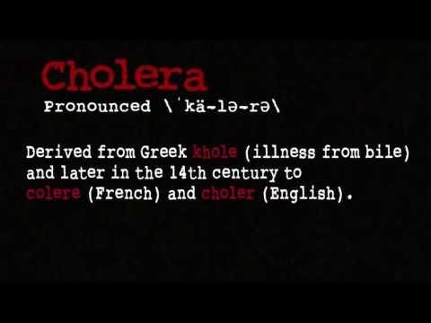 Холера. Инфекционные болезни