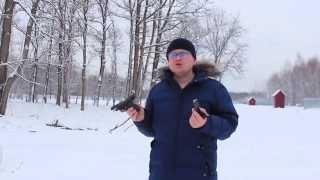 видео пистолет streamer