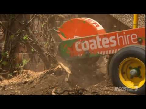Better Homes and Gardens Episode