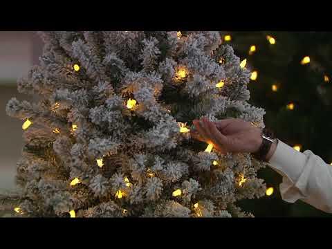 Santa's Best 137 Function LED Smart Green/Flocked Pine Tree on QVC