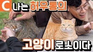 고양이가 살린 탄광 마을! 귀여운 게 최고 '대만 허우통 고양이 마을'