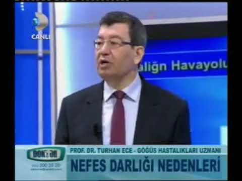 Prof. Dr. Turhan ECE Doktorum Programında