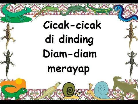 C I C A K (LIRIK) - Lagu Anak - Cipt. A.T. Mahmud - Musik Pompi S.