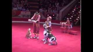 Yakuboskie.ru DogShow Clowns with dogs Moscow Circus Клоуны с собачками
