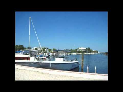 Venetian shores marina in islamorada the florida keys for Venetian shores