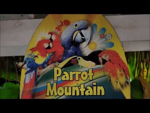 Out and About Pt 3 Parrot Mountain, a bit long
