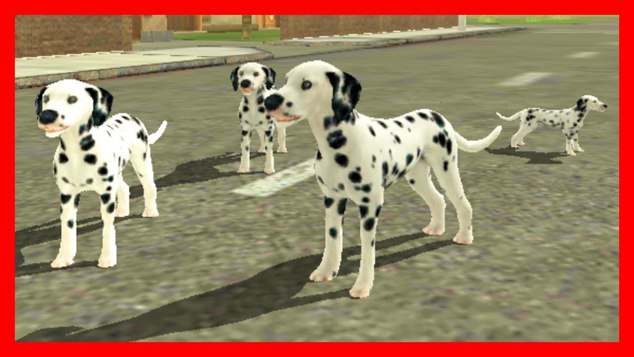Симулятор собаки: жизнь щенка