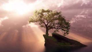 Daniil Shafran - Rachmaninoff - Cello Sonata in G minor, Op 19