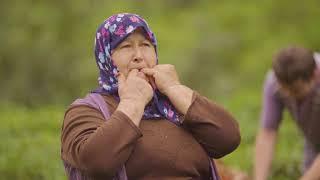 Doğu Karadeniz'de Asırlardır Kullanılan Kuş Dili UNESCO Kültürel Miras Listesine Alındı
