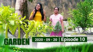 my-garden-episode-10-20-09-2020