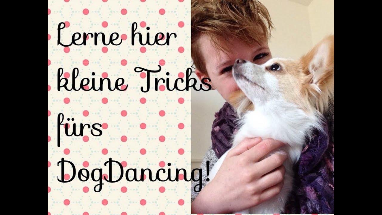 kleine dogdance tricks zum nachmachen doovi. Black Bedroom Furniture Sets. Home Design Ideas