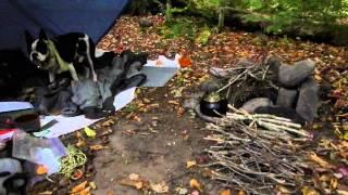 Bushcraft Camp Cheap tarp campfire overnight trip tyvek included