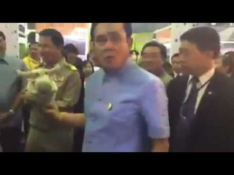 Thai Angry Prime Minister throw a doll to reporter