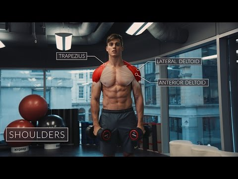 Exercise Anatomy: Shoulders Workout | Pietro Boselli