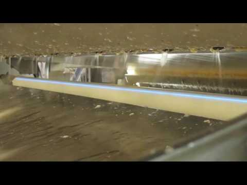 Warm water shrimp sorting machine Genius - TOMRA Sorting