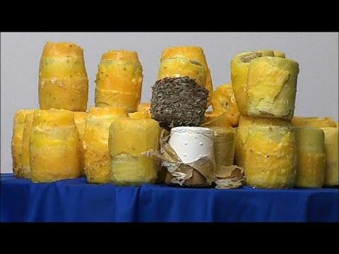745 kilos de piñas rellenas de cocaína colombiana