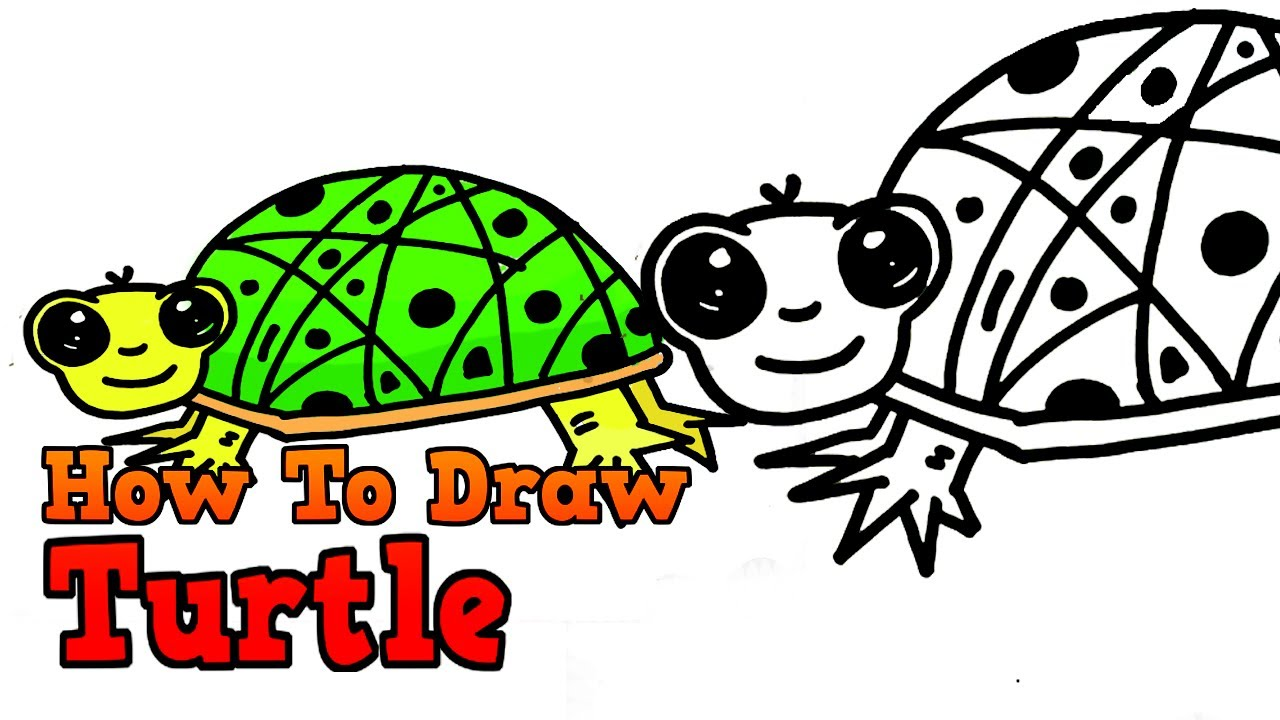 how to draw easy turtle step by step for kids drawing tutorial