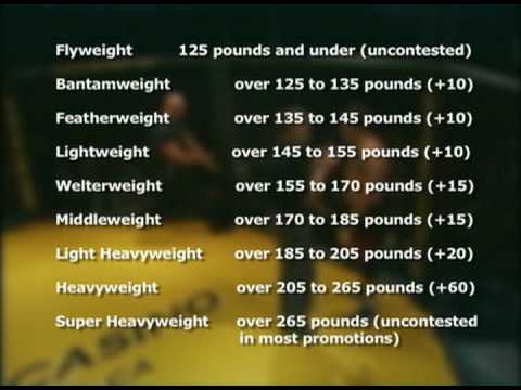 Refs Doc Hamilton Explains Mma Weight Divisions Youtube