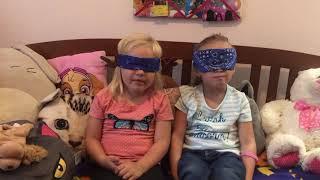 Blindfold Food Challenge!