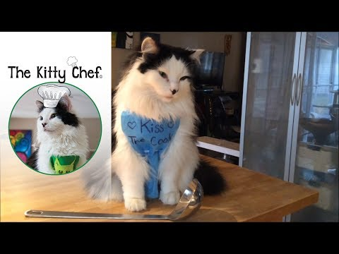 The Kitty Chef (The Oreo Cat): Chicken Soup For Cats.