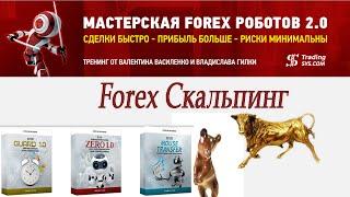 Советники Форекс: Forex Скальпинг от В. Василенко и В. Гилки(, 2014-11-27T09:06:21.000Z)