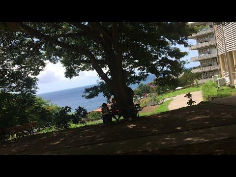 Das Schulsystem auf Martinique