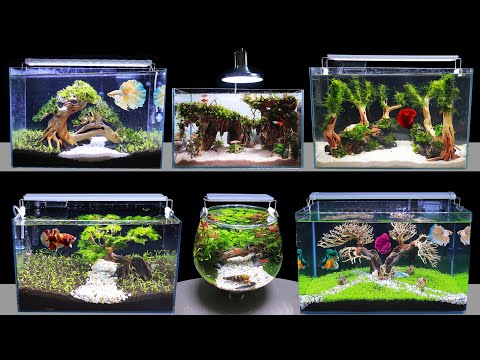 Top 6 How To Make Mini Planted Fish Tank At Home Ideas 6 Diy Aquascape Aquarium Decoration Ideas Youtube