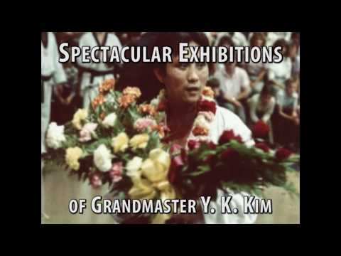 Exhibitions of Y K Kim 4