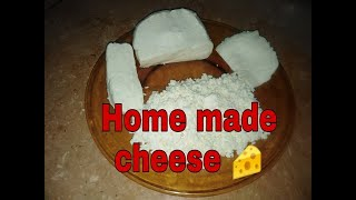 How To Make Cheese At Home Only 2 Ingredients Ii Easy Chesse Recipe