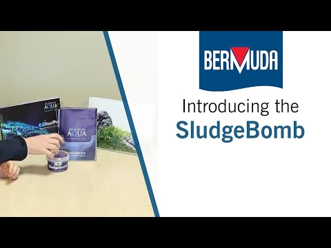 Bermuda Sludge Bomb - How to clear a dirty pond
