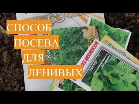 Во саду ли, в огороде (русская народная песня)