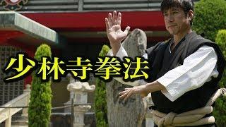 少林寺拳法の総本山で凄い男たちに出会った Karate meets Shorinji Kempo!