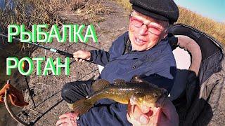 Рыбалка на ротана осенью Ротан КРАСАВЧИК