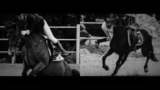 Страха в реальности нет | Конный спорт