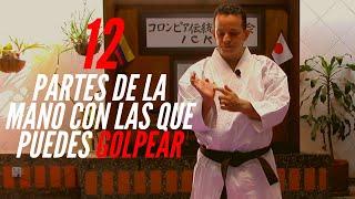 12 Partes De La Mano Técnicas De Mano En Karate Youtube