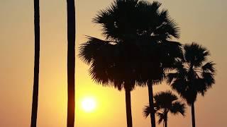 Beautiful Nature Videos For Short Films ||  Chhota Talkies || Dop Bunny varma