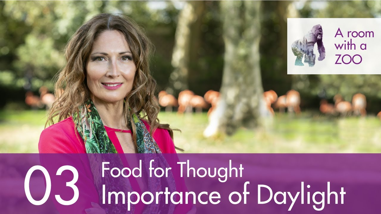 Food For Thought With Anja Stas 3 The Importance Of Light A Room With A Zoo News A Room With A Zoo