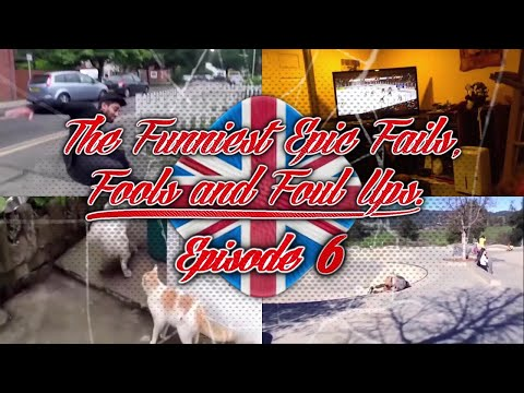 Episode 6 #thefunniestepicfailsfoolsandfoulups try not to laugh at the cute funny cats & epic fails