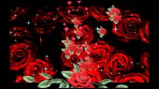 Ich sende dir Rosen ....