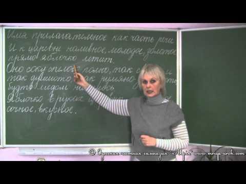 Прилагательное Презентации по русскому языку