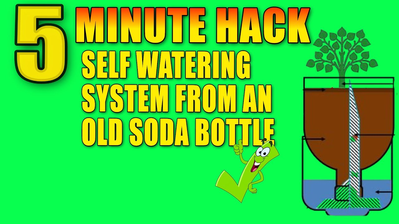 Recycled Soda Bottle Watering System For Growing Plants In ...
