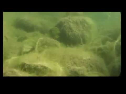 Laacher See Unterwasser Underwater HD