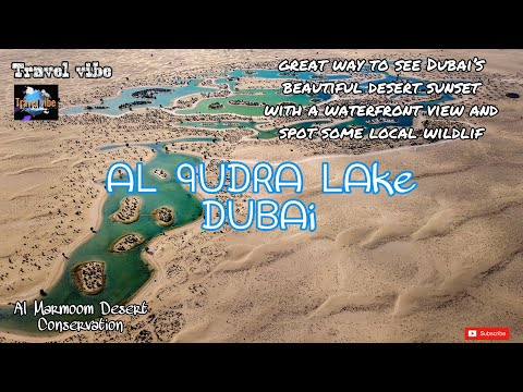 Al Qudra lake Dubai | love lakes | Al Marmoom Desert Conservation Reserve