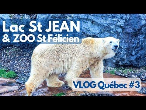 On A Fait Le Tour Du LAC Saint-Jean + ZOO Sauvage - VLOG Québec #3