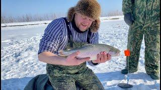 ЛОВЛЯ ФОРЕЛИ НА ЖЕРЛИЦЫ Рецепт форели на гриле Зимняя рыбалка 2021 Блюдо в казане