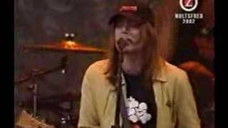 Hellacopters - Devil Stole The Beat From The Lord (live