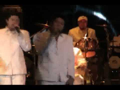 Miami musik gang